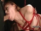 緊縛して吊るした激カワM女に巨根で交互にイラマチオとセックスで調教するエロ動画ww